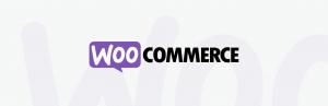 woocommerce-auction-theme